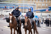 Police horses.