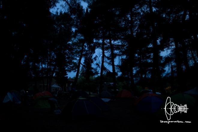 BP_camp_20160613_2